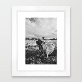 Black and White Highland Cow - Moo Framed Art Print