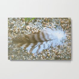 To Chase a Feather in the Wind Metal Print