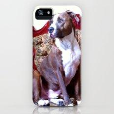 Doggie :) Slim Case iPhone (5, 5s)