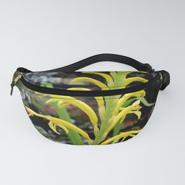 It's Only Natural Fanny Pack