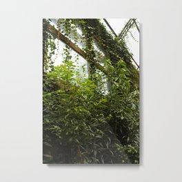overgrown Metal Print