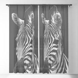 Zebra Black Sheer Curtain