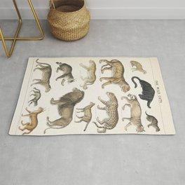 Wild Cats Vintage Illustration Rug
