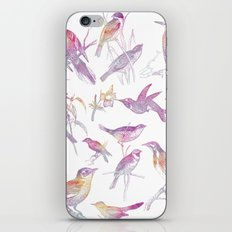 If you're a bird, I'm a bird. iPhone & iPod Skin