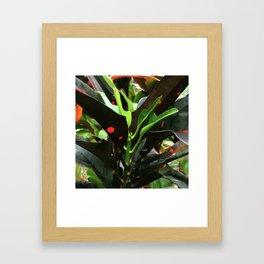 Hawaiian Island-Style Exotic Tropical Colorful Leaves Framed Art Print