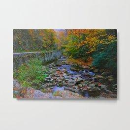 Fall Drive Metal Print