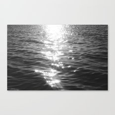 NATURE'S SPARKLE Canvas Print