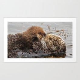 Sea Otter Mom and Pup  Art Print