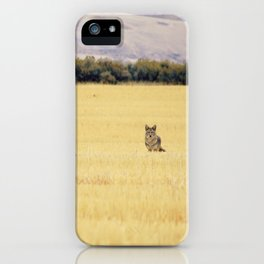 Canidae iPhone Case