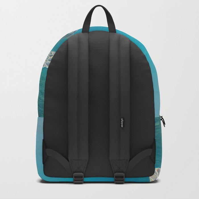 Pacific Pet Backpack