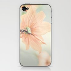 Noonday Dreams iPhone & iPod Skin