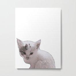 small kitten Metal Print
