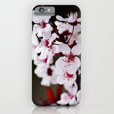 Signs of Spring 2 Slim Case iPhone 6s