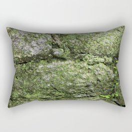 The spring wall Rectangular Pillow