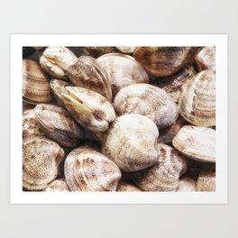 clam texture Art Print