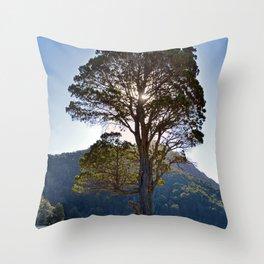 The Big Tree at Patagonian Lake Throw Pillow