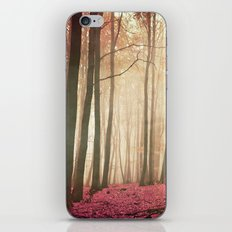 red woods iPhone & iPod Skin