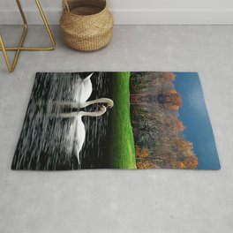 Swimming Swans  Rug