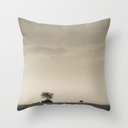 Lone Wildebeest grazing in South Africa Throw Pillow