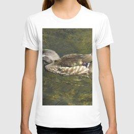 Female Wood Duck at Green Valley Inn T-shirt