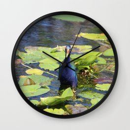 Purple Gallinute Wall Clock
