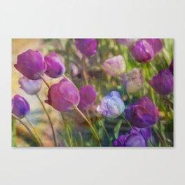 Lavender Flora  Canvas Print