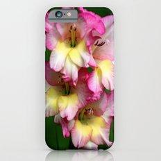 Gladiolus -  Slim Case iPhone 6s