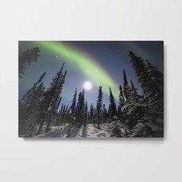 Alaska USA Denali National Park, polar light Nature Sky Snow Trees Aurora northern light Metal Print