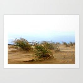 Dunes [1] Art Print
