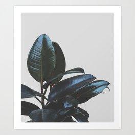 Botanical Art V4 #society6 #decor #lifestyle Art Print