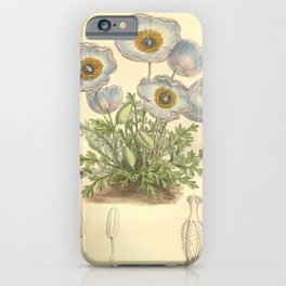 Flower 8130 meconopsis bella iPhone Case