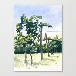 Banner Elk Canvas Print