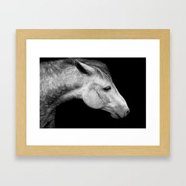 Casper | Horse Photography | Animal Art | Minimalism | Nature | black-and-white Framed Art Print