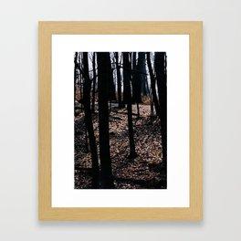 Stick Trees Framed Art Print