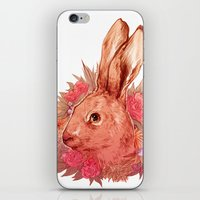 hare iPhone & iPod Skins featuring Hare by batcii