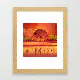Flamingos sunset Framed Art Print