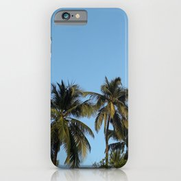 Plam Tree With A Clear Blue Sky iPhone Case