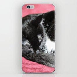 Kitty nap time. iPhone Skin