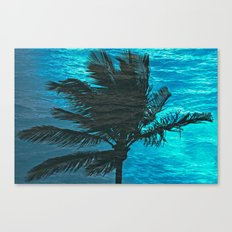 SWIMMING PALM Canvas Print