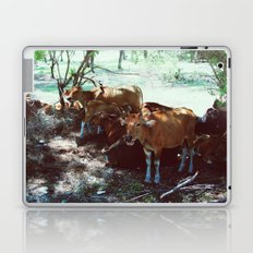 Gili Cows Laptop & iPad Skin
