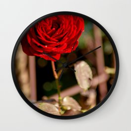 The red rose Wall Clock