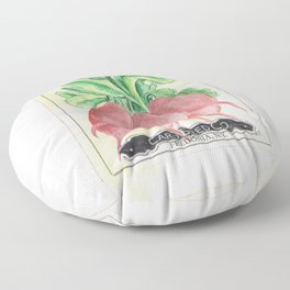 Radish Seed Packet Floor Pillow