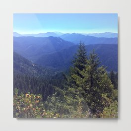 Willamette National Forest Metal Print