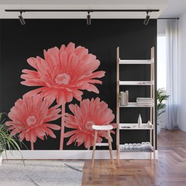 3 Pink Gerbera - Black Background Wall Mural