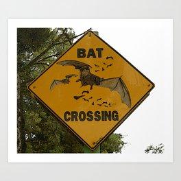 Bats Xing Art Print