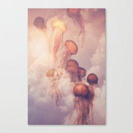 JELLY SKY Canvas Print