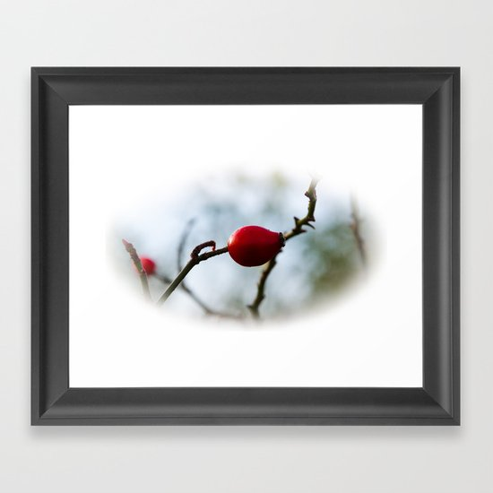 rose hip Framed Art Print