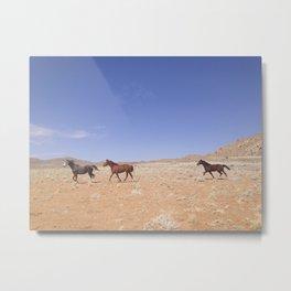 Wild Horses Running in Namibia Metal Print