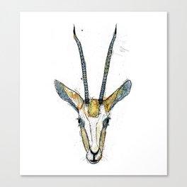 The Antelope Canvas Print