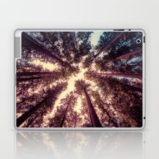 Forest Sky - Reaching Woods Laptop & iPad Skin